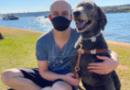 Procon DF multa Uber em R$ 26 mil por motorista se recusar a levar cão guia